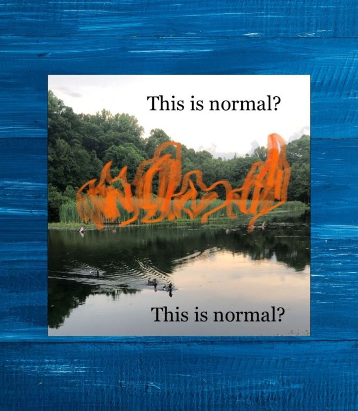 this is normal? by shelsey vazquez